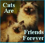 Join the Cats Are Friends Forever Webring!